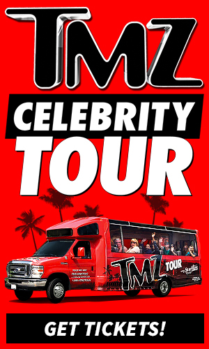 tmz-tour-palm-trees-1